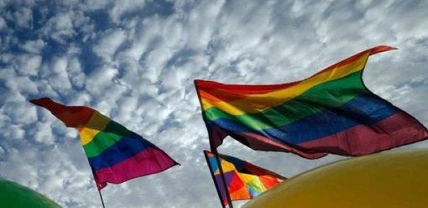 Manifestations contre les L.G.B.T au Sénégal: Les homosexuels de France très en colère contre…