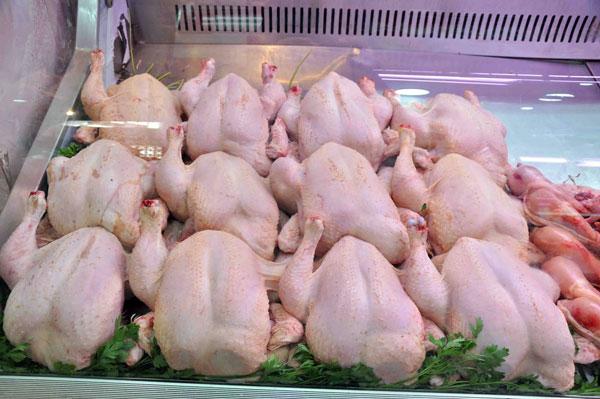 Korité : Des assiettes sans poulet