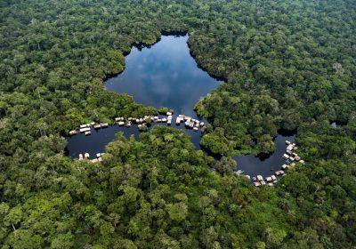 JOURNEE DE L'ENVIRONNEMENT : Un plaidoyer pour la protection des forêts