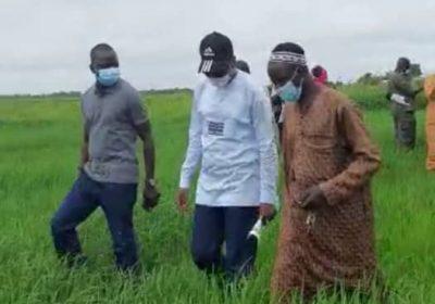 """Ibou Faye aux détracteurs du ministre Moussa Baldé :"""" Les vrais paysans sont dans les champs et non à Dakar pour…"""""""
