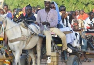 Touba – Augmentation du prix du transport : Les charretiers se frottent les mains