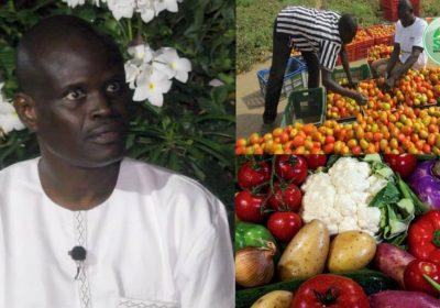 Expo Dubaï 2020 : Dr Macoumba Diouf expose les grands progrès de l'horticulture